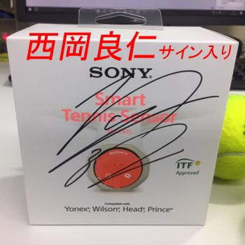 sony-sts-w350-nishi